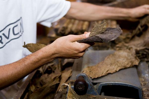 Fabrication du cigare : assemblage des feuilles