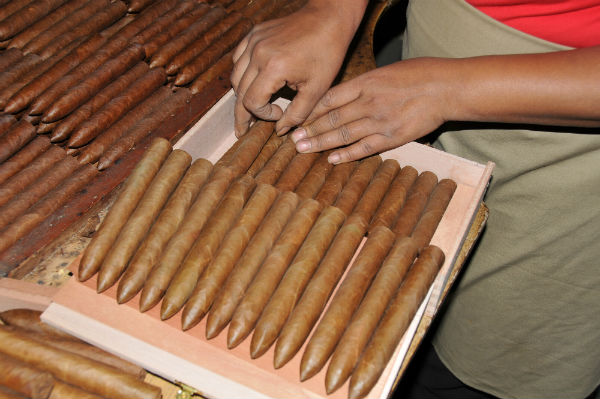 Fabrication des cigares : emballage des cigares