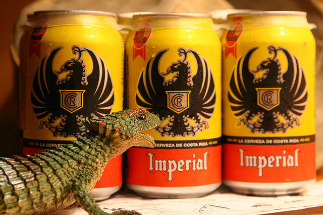Canettes Bière Imperial Costa Rica