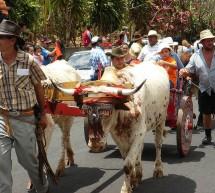 Fête Desfile de Santos y Boyeros de San José