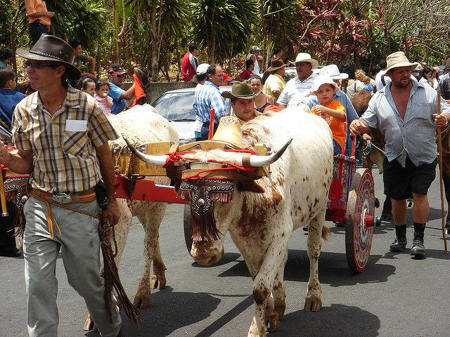 Photo d'un défilé de charrettes au Costa Rica